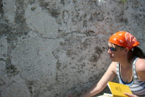Geography major Kristy Burden-Smith of Owensboro takes notes at an outcrop of ancient coral within the Key Largo Limestone in the Florida Keys.