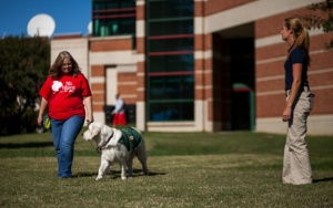 Teresa Jameson (left) was one of six WKU staff members who were trained as handlers for CanDoo, a facility dog. (WKU photo by Bryan Lemon)