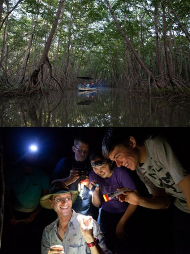 The number of students participating in Winter Term Study Aboard courses increased more than 30 percent in  2014. Dr. Keith Philips led 16 Gatton Academy students to Costa Rica for Biology 485: Costa Rican Biodiversity Studies and Research.  (WKU photos by Clinton Lewis)