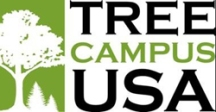 tree_campus_logo