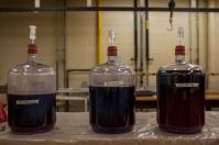 Grape juice from WKU's vineyard.