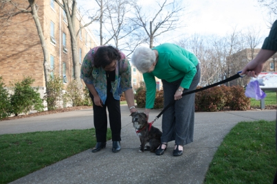 WKU's Counseling & Testing Center welcomed Hope, a new therapy dog.