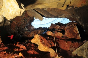 A view from the cave looking up at the sinkhole opening at the wall of the Skydome.