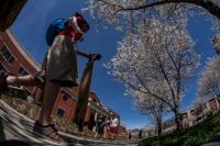 Spring scenes on the WKU main campus.