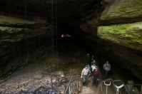 WKU and the Mammoth Cave International Center for Science and Learning conducted an environmental education event at Mammoth Cave National Park on May 30. The Obscura Day event included injecting water tracing dye into a sinking stream above the Mammoth Cave system to help people understand how water flows through cave systems and how they can be protected.