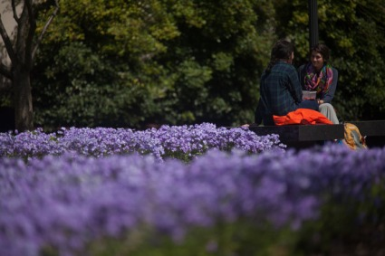"""WKU's on-campus landscaping has earned national recognition in The Campus Wild: How College and University Green Landscapes Provide Havens for Wildlife and """"Lands-on"""" Experiences for Students, a new publication from the National Wildlife Federation. (WKU photo by Bryan Lemon)"""