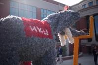 WKU celebrated Homecoming 2015 on Nov. 7.