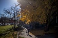 Fall 2015 campus scenes