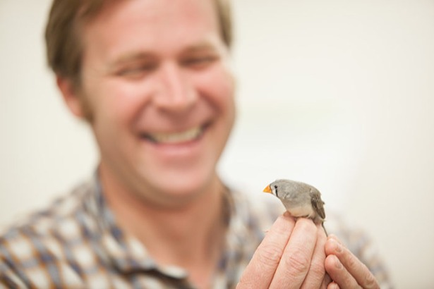 Dr. Noah Ashley has received a National Science Foundation research grant to study the physiological effects of sleep loss on arctic songbirds. (WKU photo by Clinton Lewis)