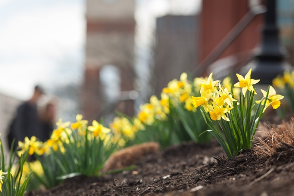 Unseasonably warm late February temperatures brought a springlike feel to the WKU campus.