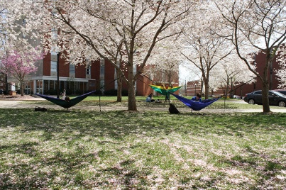 Spring scenes on the WKU campus.