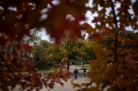 Fall on the WKU campus
