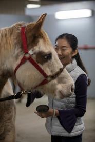 Scenes from WKU's equine program